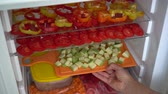 fermuar : Freezing fresh vegetables at home. Food, storage, dieting and people concept Stok Video