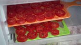 konzervace : Freezing Raw Tomatoes. Spread vegetables in a single layer on a large sheet for freeze