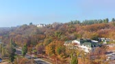 ストリート : Aerial video. Autumn trees on the hill. Buildings among the trees. Sea shore 動画素材