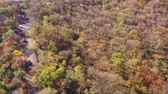 outonal : Aerial view. Autumn trees in a public park.