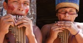 абориген : Native Brazilians playing wooden flute at an indigenous tribe in the Amazon Стоковые видеозаписи