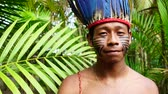 guarani : Indigenous man from Tupi Guarani tribe in the forest, Brazil