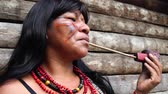 guarani : Indigenous woman from Tupi Guarani tribe smoking pipes in the forest, Brazil