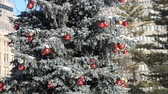 brinquedos : Decorated Christmas Tree in the park