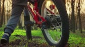 wheeled : Little boy learns to ride a bicycle in the park, sundown park, slow motion Stock Footage