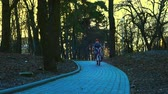 wheeled : Little boy riding the bicycle in the park, sundown park, slow motion