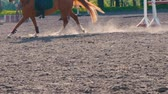 padok : Foot of horse running on the sand at the training area, close-up of legs of stallion galloping on the ground, slow motion Stok Video
