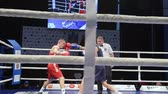 rozhodčí : LVIV, UKRAINE - November 14, 2017 Boxing tournament. Lightweight boxers fight in boxing ring on tournament. Steadycam shot.