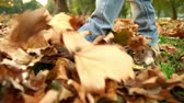 не : A footage of a kid walking through the autumnal fallen leaves