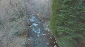 точка зрения : Aerial view of a mountain stream or river rushing down between the forest trees.  No leaves on the trees as in autumn or winter.