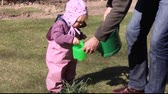Little girl (year and 5 months) watering plants in the yard 影像素材