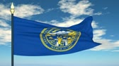 nebraska : Flag state of  Nebraska on the background of the sky and flying clouds Stock Footage