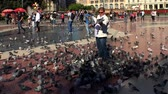 Pigeons on the square in the center of Barcelona. Spain. Стоковые видеозаписи