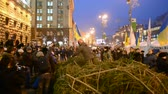 independence : People with pine-tree near Kiev State City Administration during Euro maidan meeting in Kiev on December 19, 2013 devoted to declining of Ukraine for integration to the European Union.