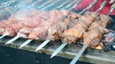 conceptual : kebab (shashlik) under fire, barbecue with delicious fresh grilled meat on gril