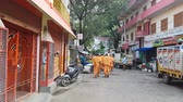 ibadet : Monks with Saffron Robes in Durga Puja Rishikesh