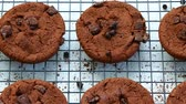 escritorio : Close-up galletas de chocolate