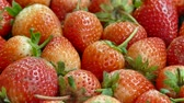 morango : Close up Fresh strawberry