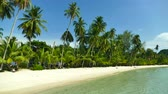 тропические фрукты : Nature with tropical sea and beach on white cloud and blue sky