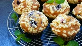 yabanmersini : Muffins with Blueberry Stok Video