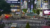 multidão : TOKYO - JAPAN, JULY 29, 2018 : People walking the Shibuya crossing