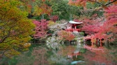 köprü : Daigo-ji temple with colorful maple trees in autumn at Kyoto,Japan