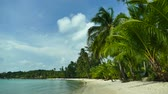 fruta tropical : Nature with tropical sea and beach on white cloud and blue sky