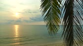 kokosnoot : Beautiful tropical beach and sea landscape at sunset time