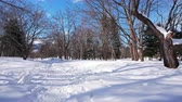 street view : Falling snow in winter season around park with snow covered trees Stock Footage