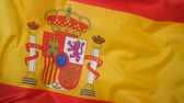 ministers : Waving flag of Spain Stock Footage