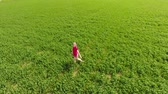 vigoroso : A beautiful young blonde girl is walking along the field of young wheat. A woman in a red T-shirt poses in front of the drony camera. He runs away from the camera and runs after her. Fun and sports on a wheat field. Vídeos