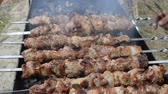 spiced : Frying pork on a skewer over a brazier. Turning meat over coals. Appetizing shish kebab. Delicious barbecue.