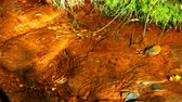 reddish : Water stream with reddish bottom. Detail of a small stream, in an area of ??iron mine, with rust sediment, in the light of dusk in Andorra. Stock Footage