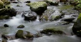 püré : Mountain river with silk effect, in which the movement of the sun through the vegetation looks, conveying a feeling of harmony, purity ... Time Lapse - long exposure 4K.Smooth motion camera: PAN
