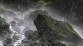 Close up of a rock at the bottom of a waterfall, with a curtain of falling water with great force.Two play speeds. 12 seconds of slow motion and 12 seconds normal play speed. Stock Footage