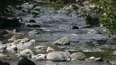 abundante : Mountain river on the Pyrenees of Andorra. River with abundant stream and boulders and with the brightness of the sun in the water. Stock Footage