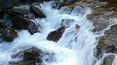 abundante : Detail mountain river on the Pyrenees of Andorra. Closeup river with abundant stream and boulders.