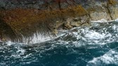 付属の : Close up of the surface of the cliff, with the movement of the waves. 動画素材