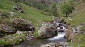 püresi : Mountain river flowing through a small valley in the Pyrenees of Catalonia (Spain). Stok Video