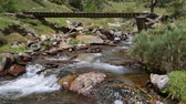 Mountain river with old wooden footbridge in the Pyrenees of Catalonia (Spain) .Time Lapse
