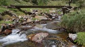 nature resources : Mountain river with old wooden footbridge in the Pyrenees of Catalonia (Spain).