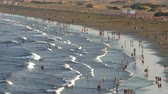 Aerial view of the English Beach, Canary Islands. Panoramic with many people walking with their own reflection in the water, and the movement of waves at sunset, in the zone of Maspalomas, island of Gran Canaria, Spain. Dostupné videozáznamy