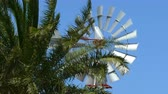 Old vintage style windmill rotating between palm branches on sunny day. Symbol of the use of wind as sustainable energy. Dostupné videozáznamy