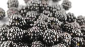 lody : Wild blackberries