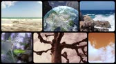 Wonderful earth, montage