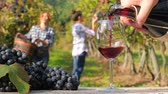 evocative image with red wine in the foreground and women harvesting grapes in the background Stock Footage