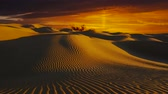 Wonderful Sahara desert landscape. Dunes at sunset.