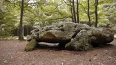 реликвия : Dolmen La Grosse Pierre, megalithic capstone in Normandy, PAN Стоковые видеозаписи