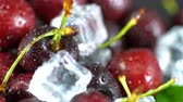 czerwony : Fresh ripe cherries for background Wideo