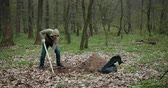 duro : Bloody Murderer Is Digging A Grave For The Victim. The Guy Digs A Hole In The Woods. Criminal Concept. A Man Wants To Bury Stolen Things In The Woods. Prores, Slow Motion